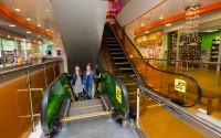 Дизайн вертикальных коммуникаций торгового центра «Цветной парк»