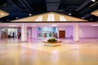 В дизайн-проекте торгово-развлекательного центра «Лотос Plaza» используются природные мотивы., которые импонируют современному покупателю.